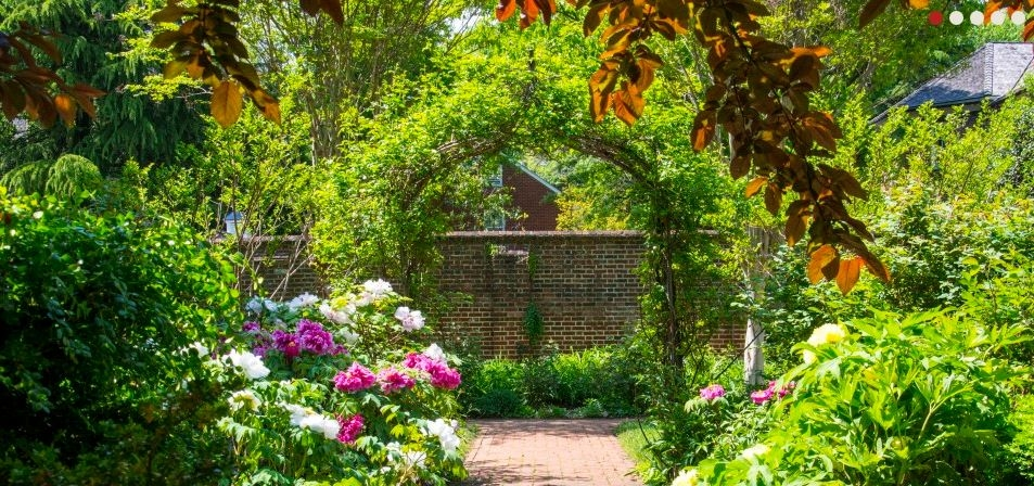 Secret Garden Tour