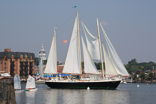 Watch the Annapolis to Bermuda Race Start
