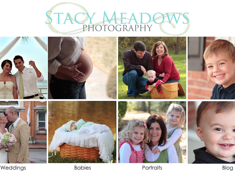 Stacy Meadows Photography